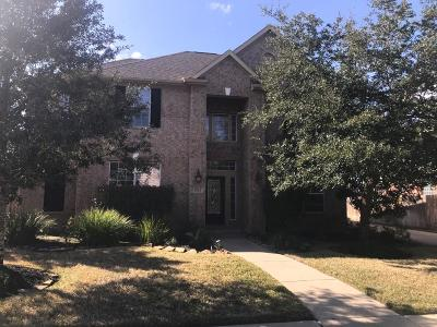Katy Single Family Home For Sale: 9623 Moonstone Mist Lane