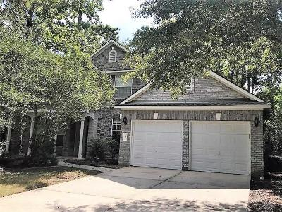 The Woodlands Single Family Home For Sale: 3 Fallsbury Court