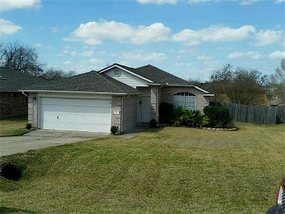 Montgomery Single Family Home For Sale: 211 Leisure Lane