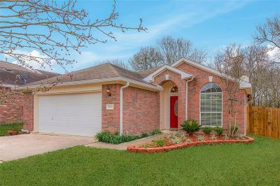 Montgomery Single Family Home For Sale: 18543 Sunrise Pines Drive