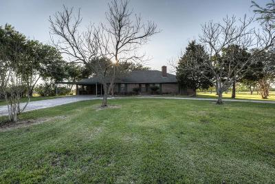 Pearland Single Family Home For Sale: 7409 Bailey Road