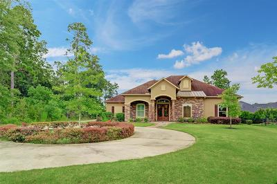 Spring Single Family Home For Sale: 5506 Bright Timber Landing Drive
