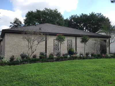 Houston Single Family Home For Sale: 16419 Locke Haven Drive