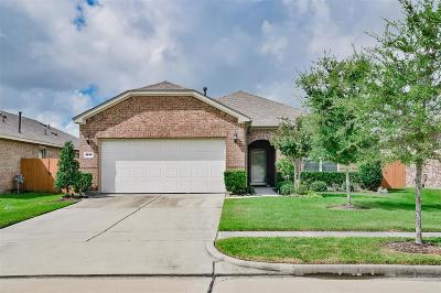 League City Single Family Home For Sale: 1615 Volterra Lane