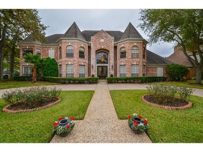 Houston Single Family Home For Sale: 15903 Bayou River Court