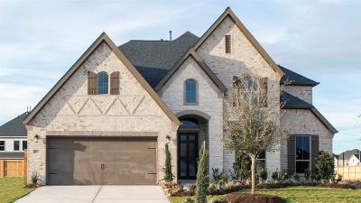 Fulshear Single Family Home For Sale: 28706 Casen Ranch Lane