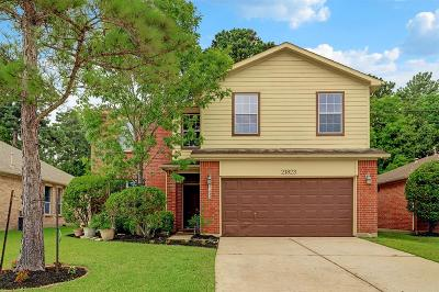 Tomball Single Family Home For Sale: 21823 Willow Downs Drive