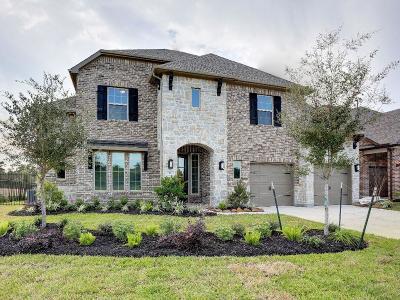 Single Family Home For Sale: 51 Springtime Creek