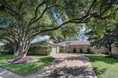 Houston Single Family Home For Sale: 10815 Albury Drive