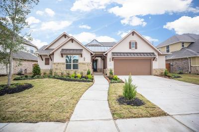 Fort Bend County Single Family Home For Sale: 16818 Clola Court