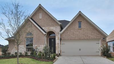 Fulshear Single Family Home For Sale: 3706 Lake Falls Drive