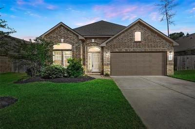 Single Family Home For Sale: 14023 Sand Ridge Crossing