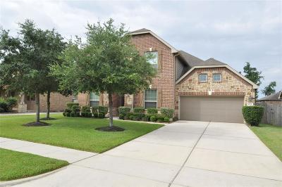 Houston Single Family Home For Sale: 14718 Castle Cove Lane