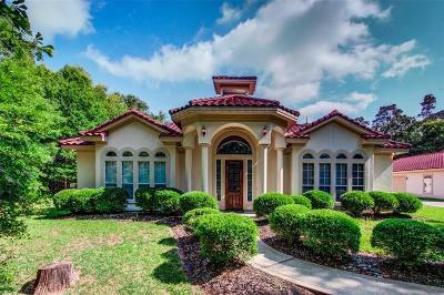 Conroe Single Family Home For Sale: 11729 Great Oak Boulevard