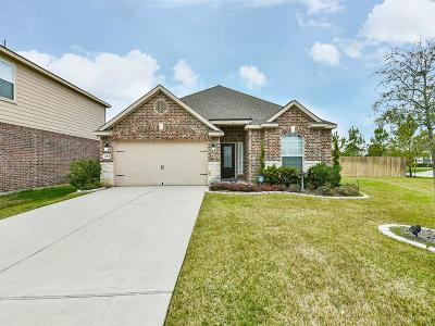 Hockley Single Family Home For Sale: 20631 Stout Drive