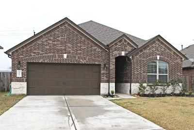 Pearland Single Family Home For Sale: 2615 Kaman Lane