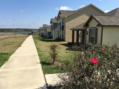 Willis Single Family Home For Sale: 10792 S Lake Mist Lane Lane