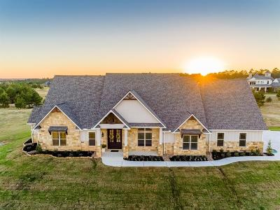 Montgomery Single Family Home For Sale: 18429 Gary Player Drive