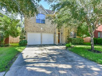 Houston Single Family Home For Sale: 614 Mosman Court