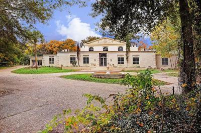Houston Single Family Home For Sale: 415 White Wing Lane