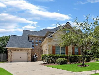 Sugar Land Single Family Home For Sale: 3602 Cottage Lake Court