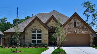 Humble Single Family Home For Sale: 16634 Whiteoak Canyon Drive