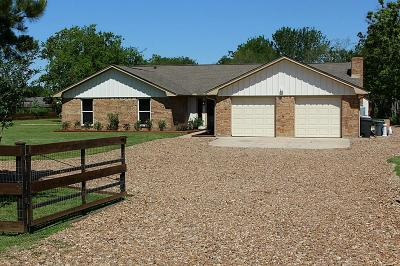 Friendswood Single Family Home For Sale: 918 Anna Lane