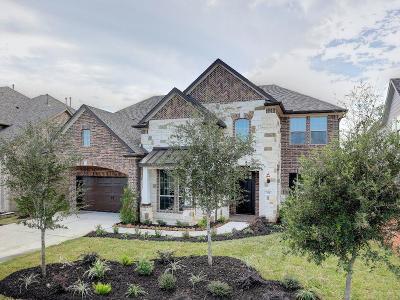 Single Family Home For Sale: 55 Springtime Creek