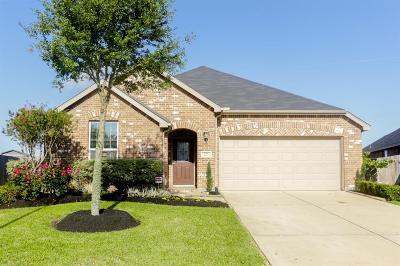 Rosenberg Single Family Home For Sale: 227 Little Summer Drive