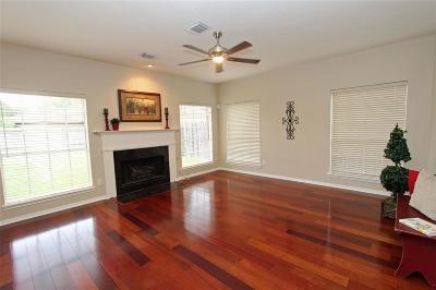 Sugar Land Single Family Home For Sale: 1614 Monvale Lane
