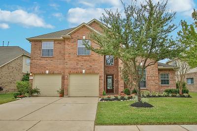 Houston Single Family Home For Sale: 16923 Locust Springs