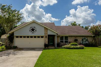 Friendswood Single Family Home For Sale: 1118 Killarney Avenue