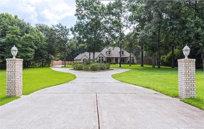 Magnolia Single Family Home For Sale: 2502 E Blue Lake Drive