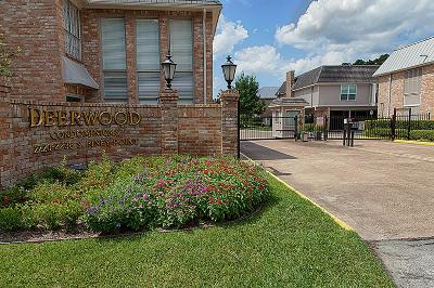 Houston Condo/Townhouse For Sale: 2230 S Piney Point Road #201