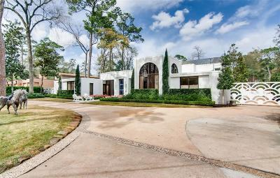 Houston Single Family Home For Sale: 9102 Chatsworth Drive