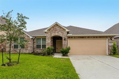 Tomball Single Family Home For Sale: 24510 Raven Cliff Falls Drive