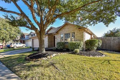 Pearland Single Family Home For Sale: 3507 Yellowstone Circle