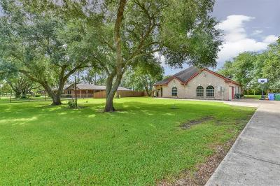 Manvel Single Family Home For Sale: 7318 Reed Lane