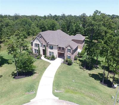 Houston Single Family Home For Sale: 14710 Belgian Beauty Court