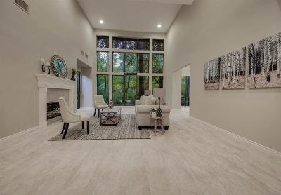 Houston Condo/Townhouse For Sale: 201 Vanderpool Lane #131