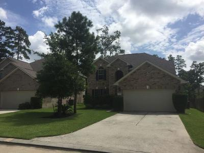 The Woodlands Single Family Home For Sale: 166 E Spindle Tree Circle