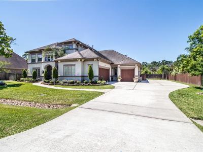 Galveston County, Harris County Single Family Home For Sale: 1104 Pine Hurst Court