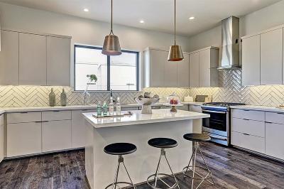 Houston Single Family Home For Sale: 3508 Lanister Lane