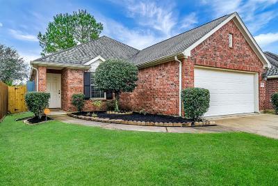 Spring Single Family Home For Sale: 2434 Sandy Fields Lane