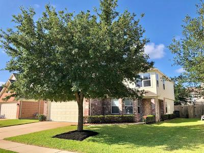 Katy Single Family Home For Sale: 3119 Madison Elm Street