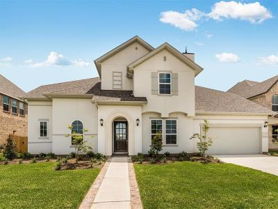 Sugar land Single Family Home For Sale: 4319 Archer Meadow Lane