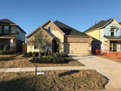 Fulshear Single Family Home For Sale: 28238 Calm Brook Lane