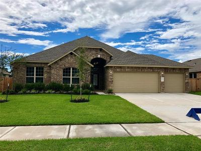 Tomball Single Family Home For Sale: 12519 Fort Isabella Drive
