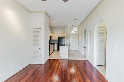 Harris County Condo/Townhouse For Sale: 1441 East Street #207