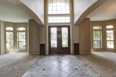 Houston Single Family Home For Sale: 16426 Pelican Beach Lane